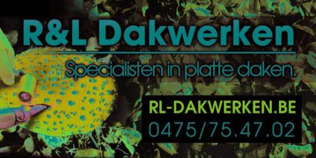 logo RL Dakwerken